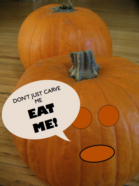 Post image for Nuthin But Pumpkin…