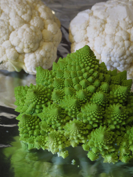 Post image for Cauliflower & Romanesco Soup