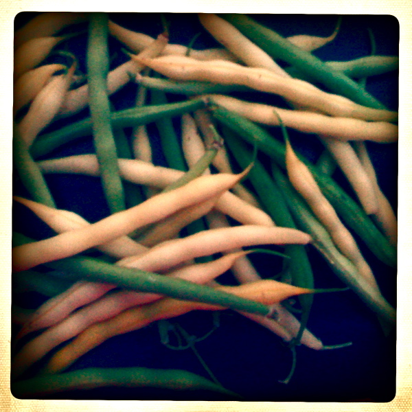 Post image for What's in Season? French Beans!
